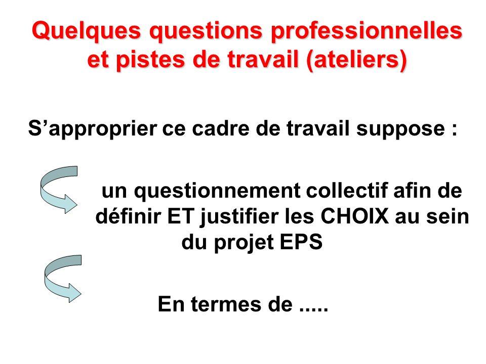 Quelques questions professionnelles et pistes de travail (ateliers) Sapproprier ce cadre de travail suppose : un questionnement collectif afin de défi