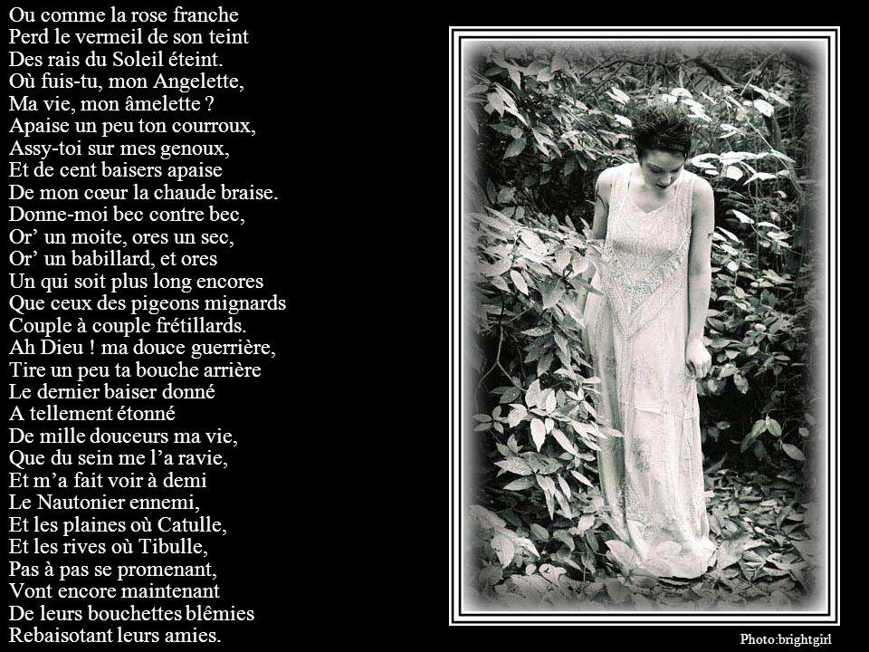 Petite Nymphe folâtre, Nymphette que jidolâtre, Ma mignonne, dont les yeux Logent mon pis et mon mieux Ma doucette, ma sucrée, Ma Grâce, ma Cythérée,