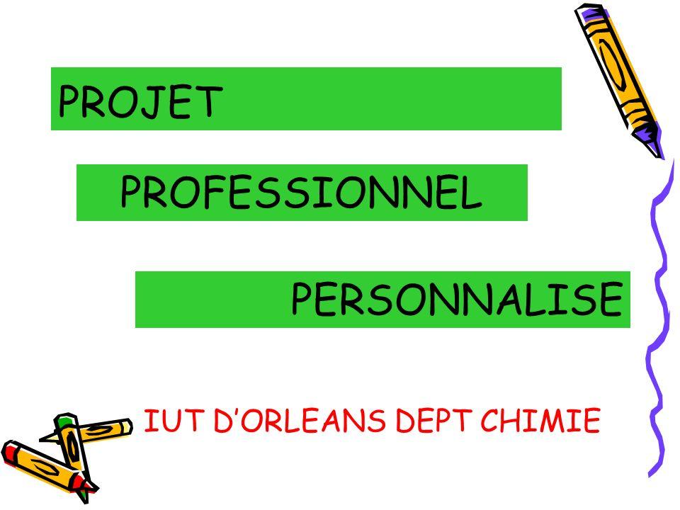 Projet Professionnel Personnalisé P comme Projet : P comme Projet : avant la recherche demploi ou la poursuite détudes.