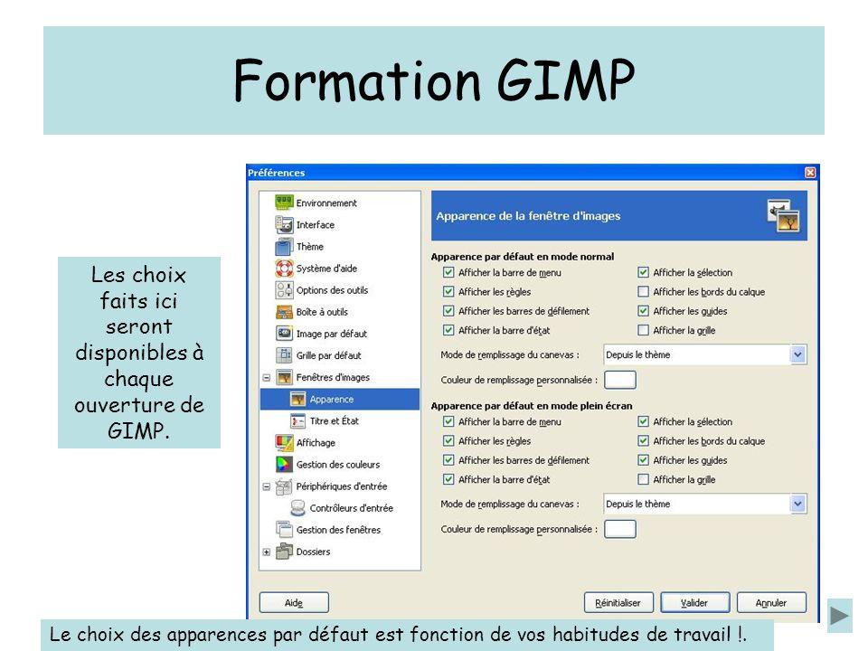 Formation GIMP Les choix faits ici seront disponibles à chaque ouverture de GIMP.