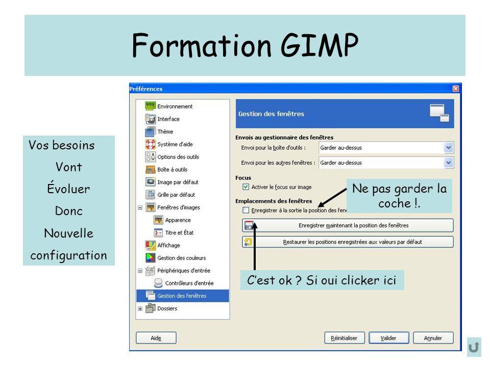 Formation GIMP Ne pas garder la coche !. Cest ok .