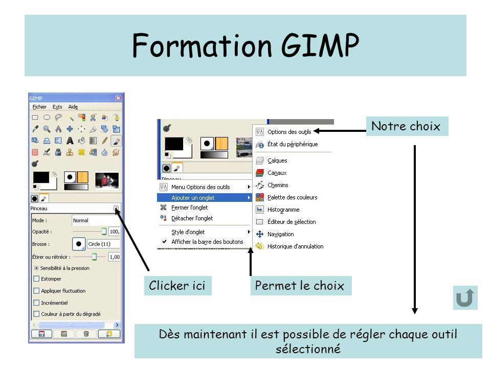 Formation GIMP Clicker iciPermet le choix Notre choix Dès maintenant il est possible de régler chaque outil sélectionné