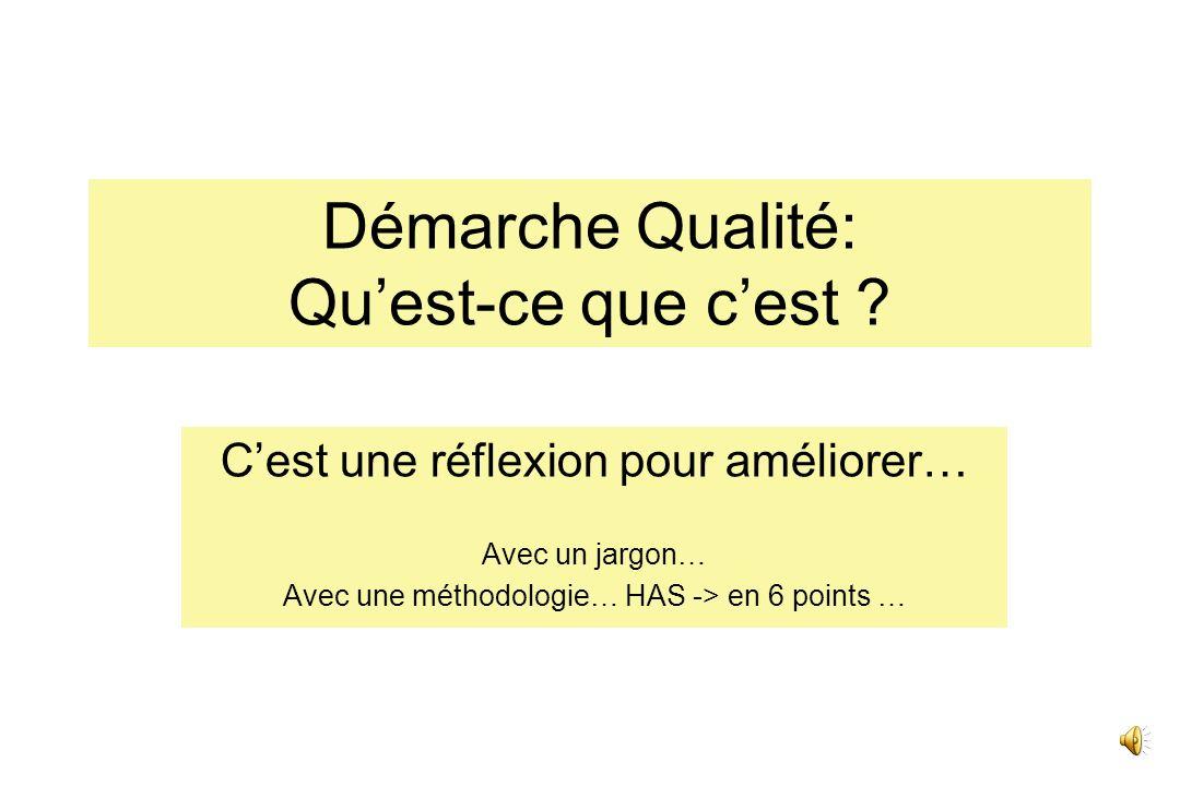 Démarche Qualité dans les Réseaux de Périnatalité JB Gouyon Cellule dévaluation du réseau périnatal de Bourgogne Centre dEpidémiologie des Populations