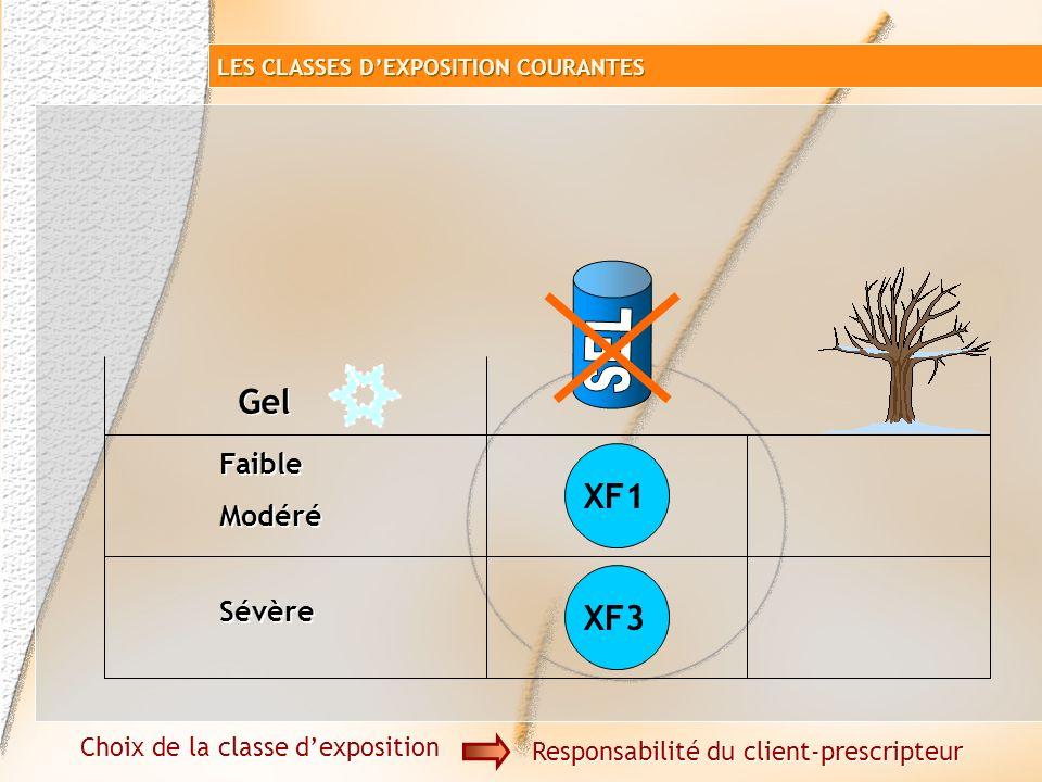 Carte des zones de gel Choix de la classe dexposition Responsabilité du client-prescripteur LES CLASSES DEXPOSITION COURANTES cf FD P 18-326