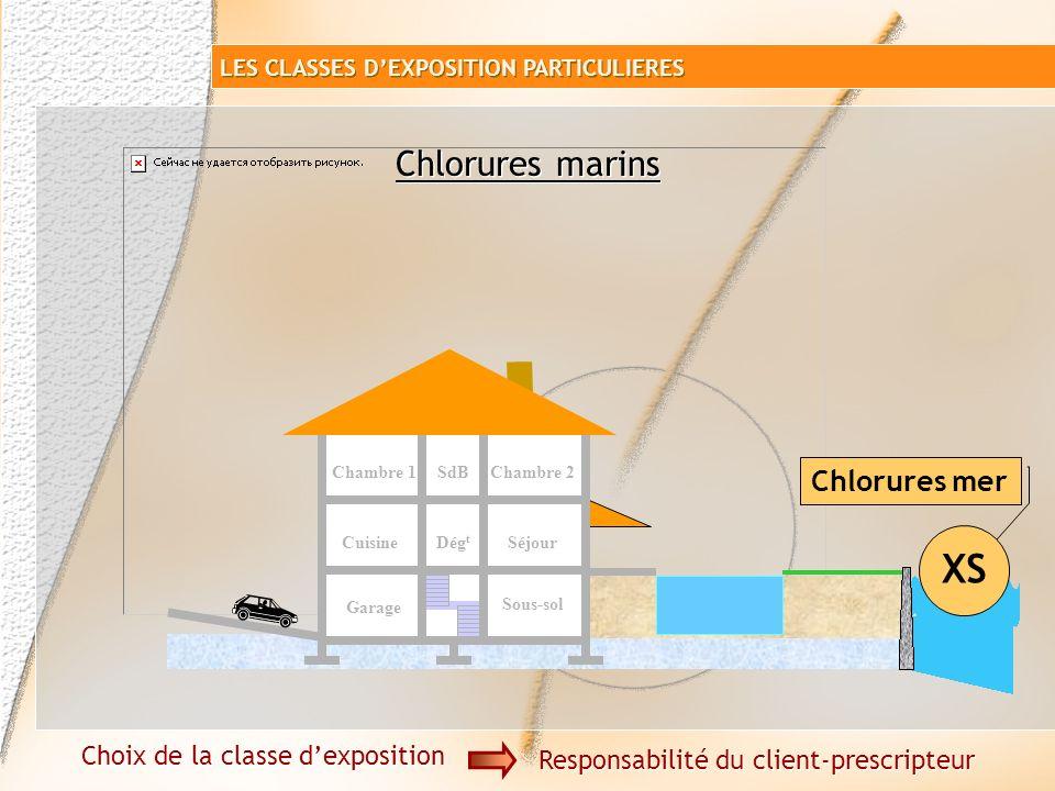 Chlorures marins XS Chlorures non marins XD Garage Sous-sol SéjourCuisine Chambre 1SdB Dég t Chambre 2 Choix de la classe dexposition Responsabilité d