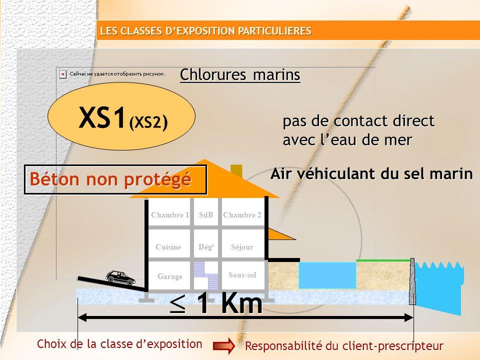 Garage Sous-sol SéjourCuisine Chambre 1SdB Dég t Chambre 2 Chlorures mer XS Chlorures marins Choix de la classe dexposition Responsabilité du client-p