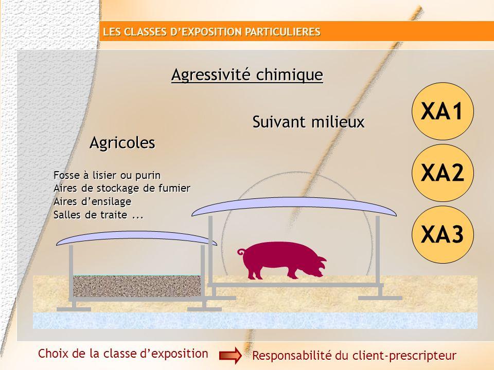 Valeurs limites pour les classes dexposition aux attaques chimiques Eaux de surface et souterraines : XA1XA2XA3 Sulfate mg/l >200 et 600 et 3000 et <