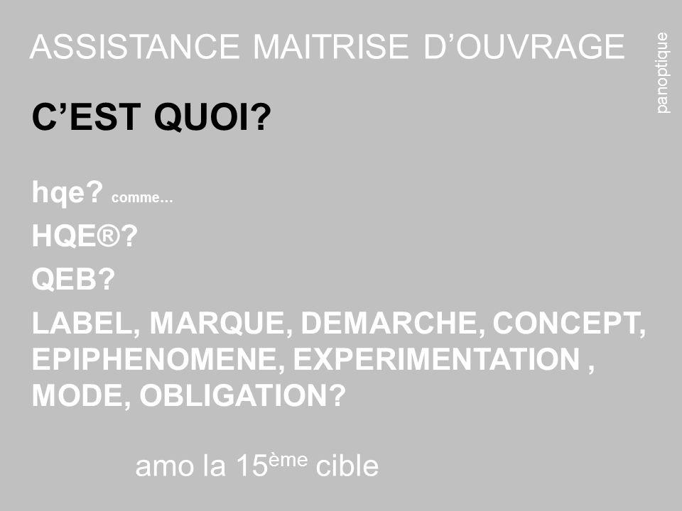 panoptique amo la 15 ème cible ASSISTANCE MAITRISE DOUVRAGE CEST QUOI.