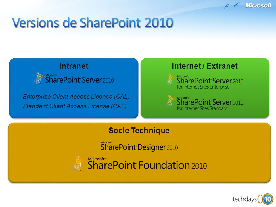 Socle Technique Internet / Extranet Intranet Enterprise Client Access License (CAL) Standard Client Access License (CAL) Intranet Enterprise Client Ac
