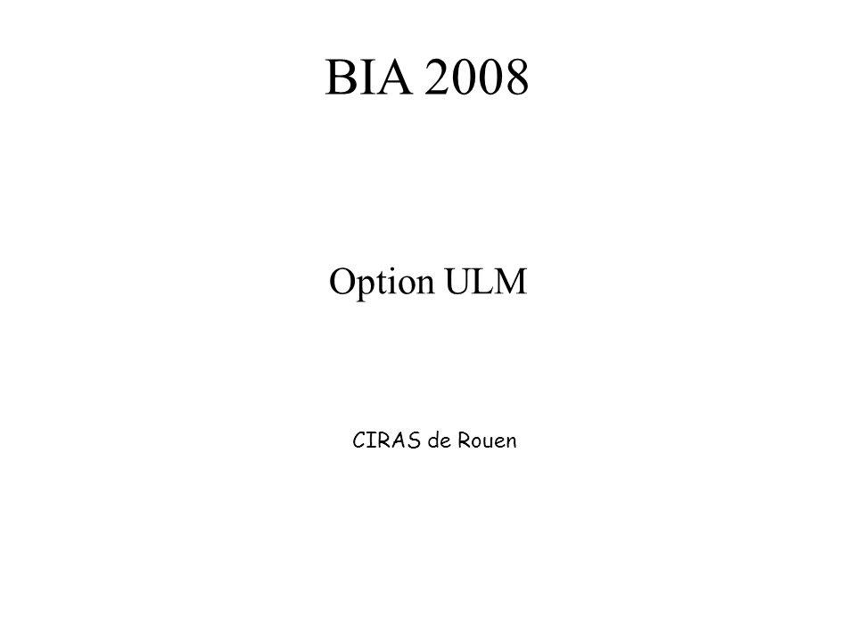 BIA 2008 Option ULM CIRAS de Rouen