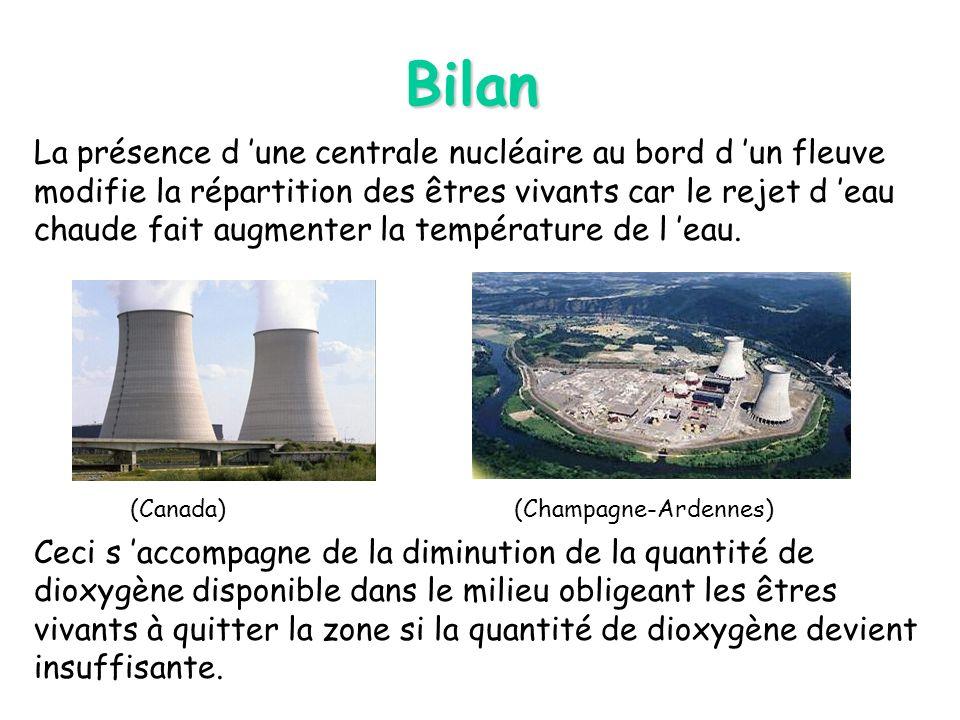 Bilan La présence d une centrale nucléaire au bord d un fleuve modifie la répartition des êtres vivants car le rejet d eau chaude fait augmenter la te