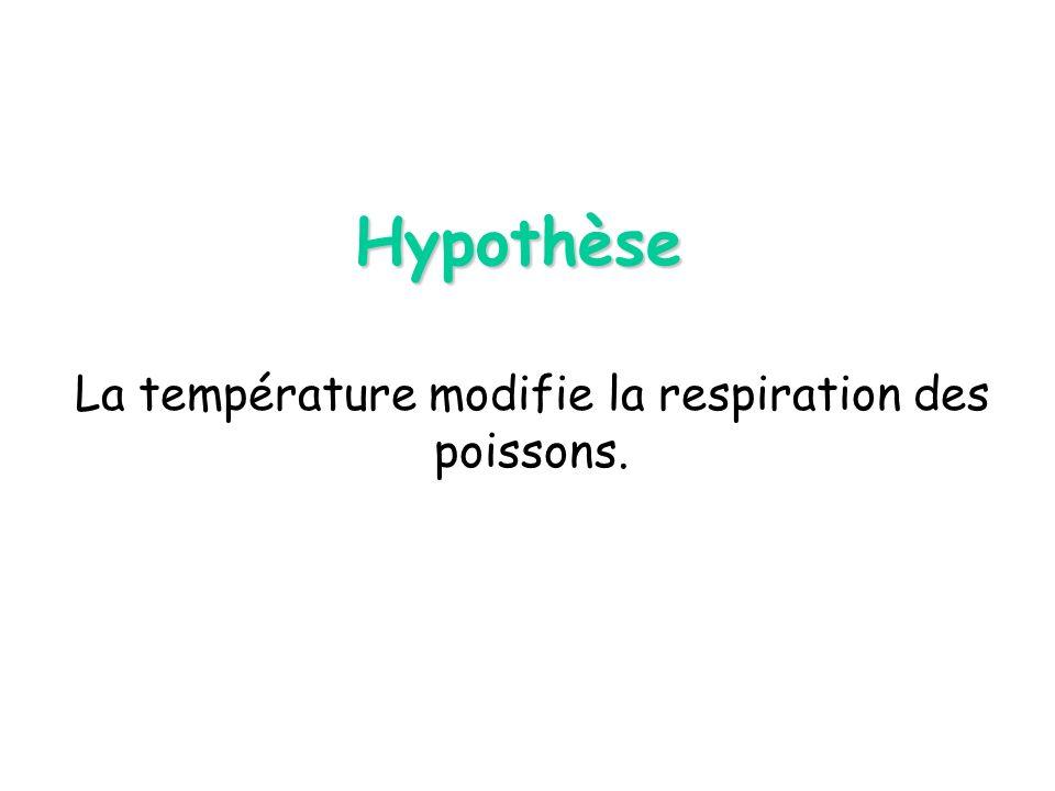 Hypothèse La température modifie la respiration des poissons.