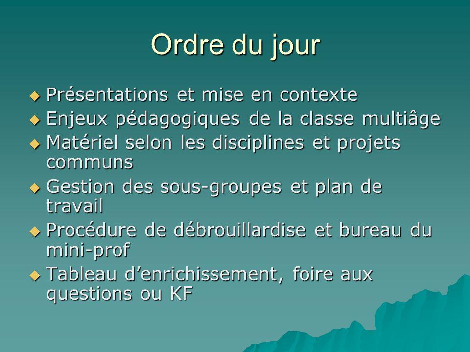 Ordre du jour Présentations et mise en contexte Présentations et mise en contexte Enjeux pédagogiques de la classe multiâge Enjeux pédagogiques de la