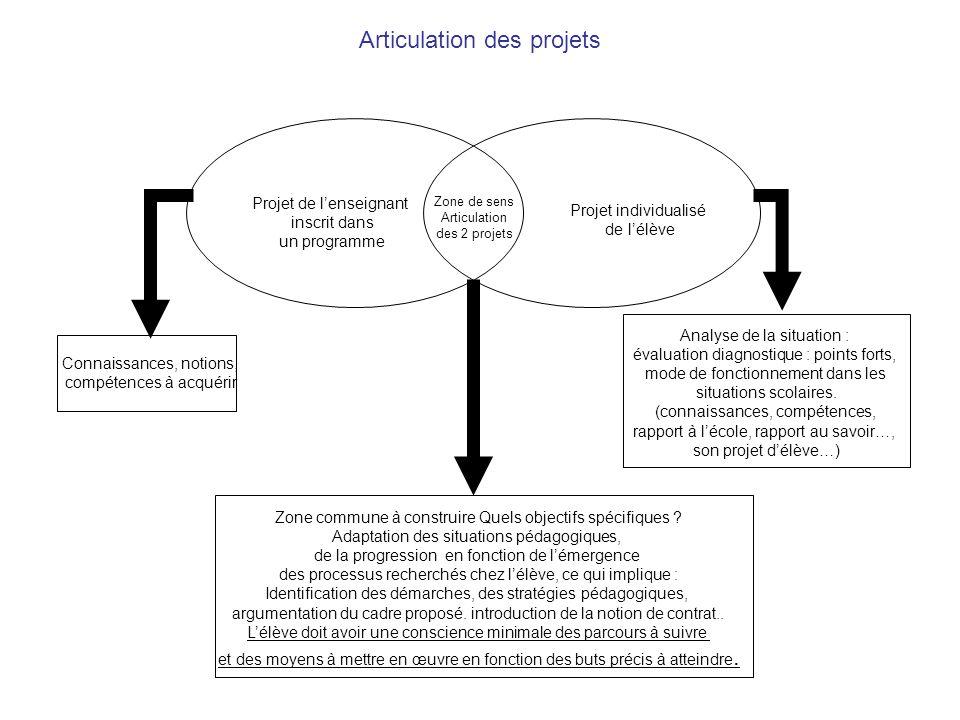 Connaissances, notions, compétences à acquérir Analyse de la situation : évaluation diagnostique : points forts, mode de fonctionnement dans les situations scolaires.