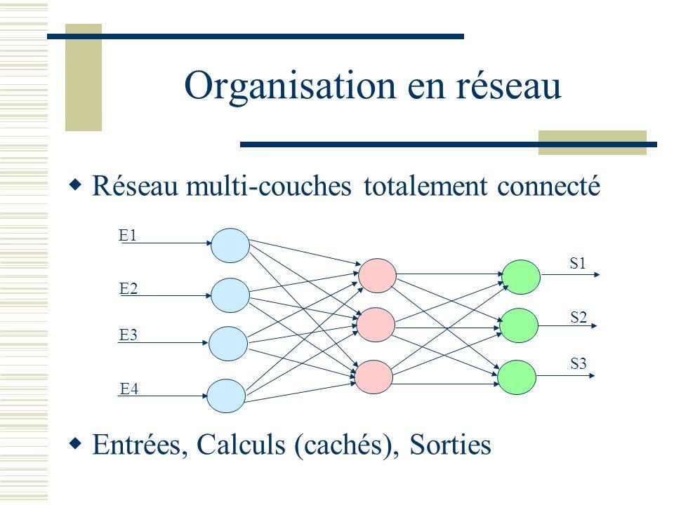 Organisation en réseau Réseau multi-couches totalement connecté Entrées, Calculs (cachés), Sorties E1 E2 E3 E4 S1 S2 S3