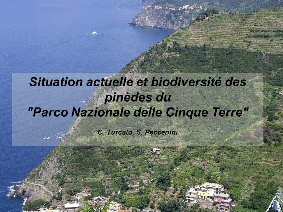 Situation actuelle et biodiversité des pinèdes du Parco Nazionale delle Cinque Terre C.
