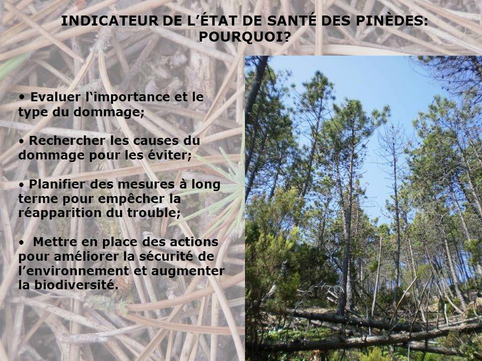 INDICATEUR DE LÉTAT DE SANTÉ DES PINÈDES: POURQUOI.