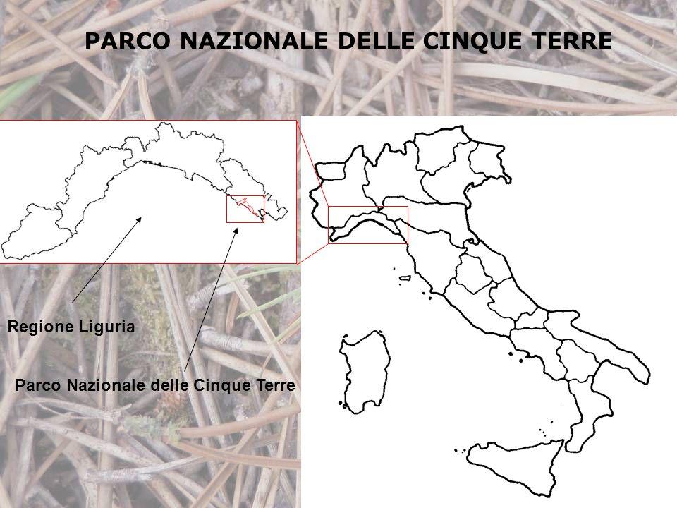 PARCO NAZIONALE DELLE CINQUE TERRE Regione Liguria Parco Nazionale delle Cinque Terre