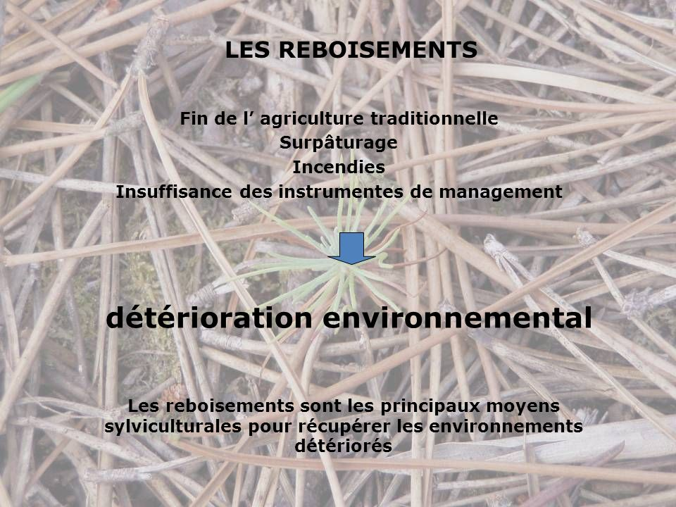 LES REBOISEMENTS Fin de l agriculture traditionnelle Surpâturage Incendies Insuffisance des instrumentes de management détérioration environnemental Les reboisements sont les principaux moyens sylviculturales pour récupérer les environnements détériorés
