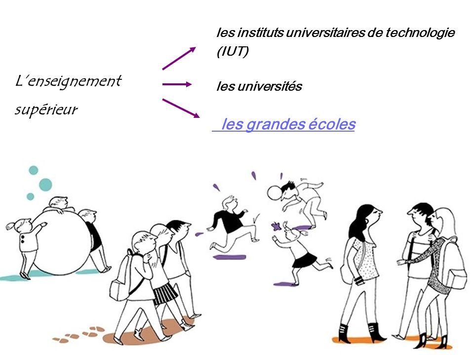 Le doctorat (D) au programme, des travaux originaux de recherche, menés au sein des laboratoires de recherche des universités ; en plus de leurs trava