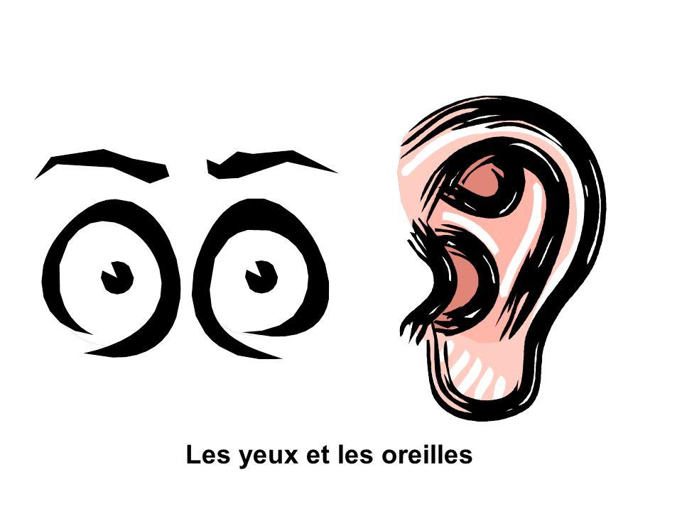 Les yeux et les oreilles