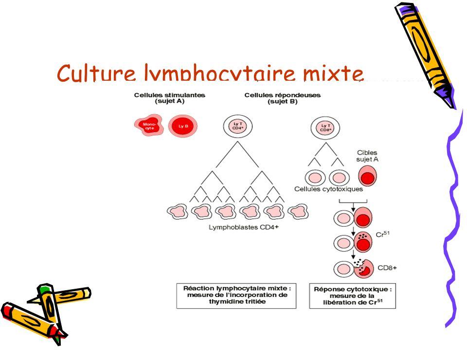 Culture lymphocytaire mixte