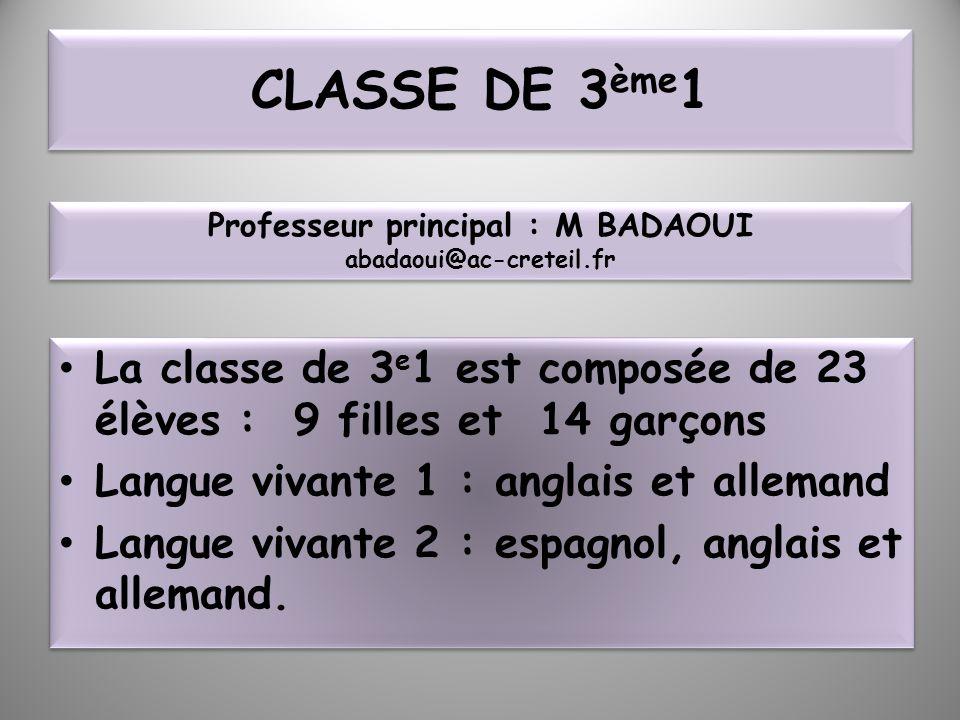 CLASSE DE 3 ème 1 La classe de 3 e 1 est composée de 23 élèves : 9 filles et 14 garçons Langue vivante 1 : anglais et allemand Langue vivante 2 : espa