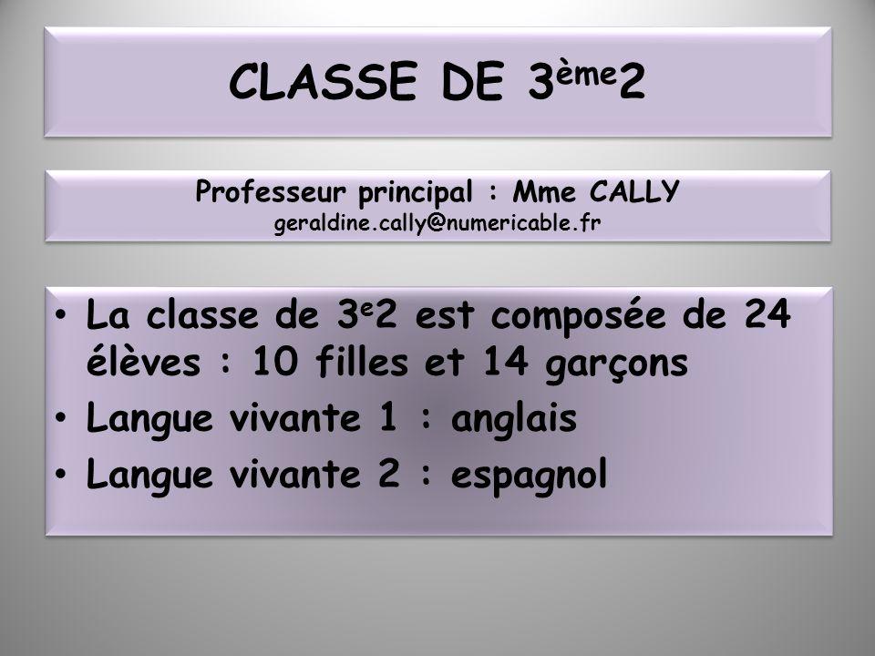 CLASSE DE 3 ème 2 La classe de 3 e 2 est composée de 24 élèves : 10 filles et 14 garçons Langue vivante 1 : anglais Langue vivante 2 : espagnol La cla