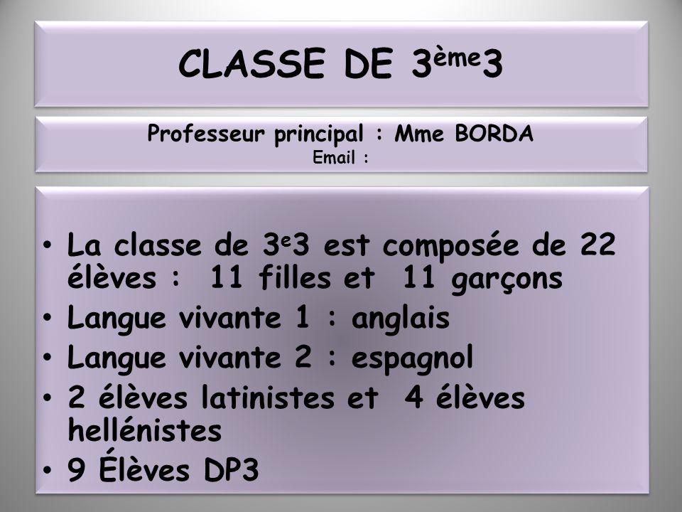 CLASSE DE 3 ème 3 La classe de 3 e 3 est composée de 22 élèves : 11 filles et 11 garçons Langue vivante 1 : anglais Langue vivante 2 : espagnol 2 élèv