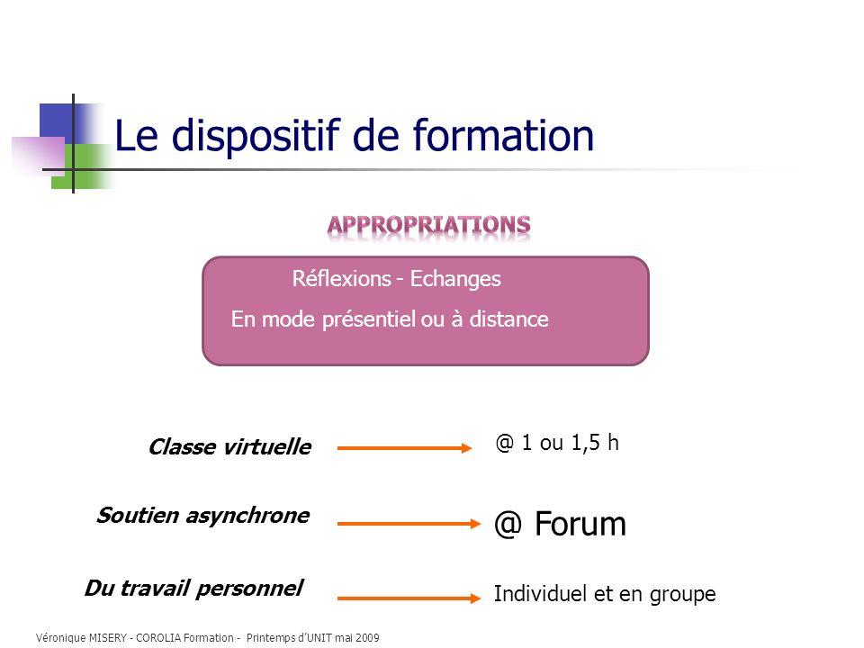 Le dispositif de formation Classe virtuelle Du travail personnel Individuel et en groupe @ 1 ou 1,5 h Réflexions - Echanges En mode présentiel ou à di