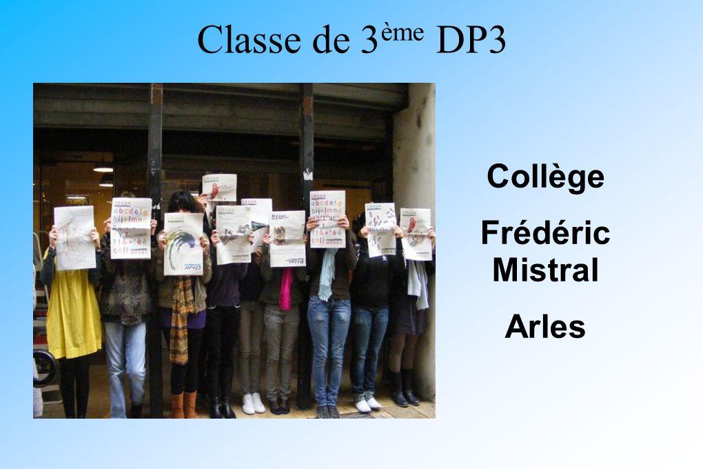 Classe de 3 ème DP3 Collège Frédéric Mistral Arles