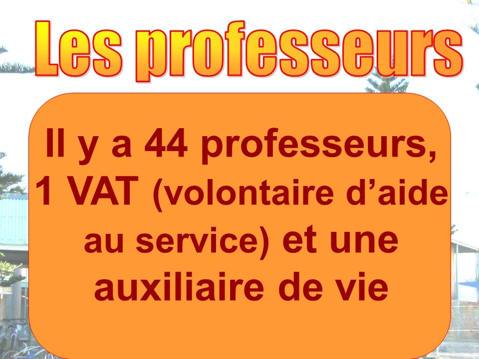 Il y a 44 professeurs, 1 VAT (volontaire daide au service) et une auxiliaire de vie