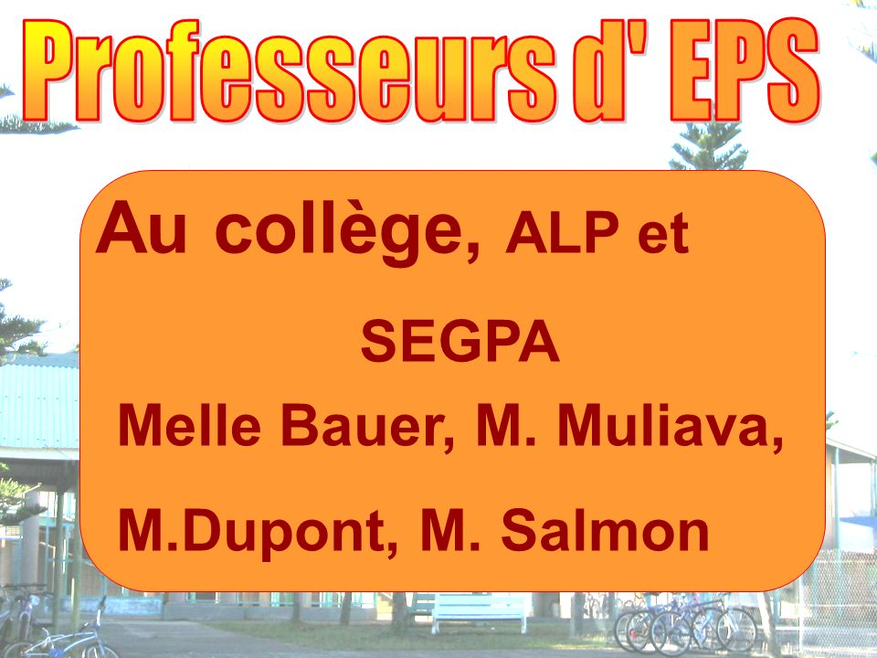 Au collège, ALP et SEGPA Melle Bauer, M. Muliava, M.Dupont, M. Salmon