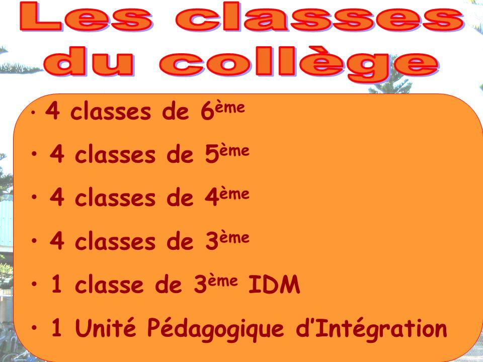 4 classes de 6 ème 4 classes de 5 ème 4 classes de 4 ème 4 classes de 3 ème 1 classe de 3 ème IDM 1 Unité Pédagogique dIntégration
