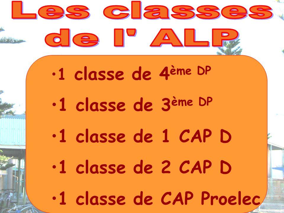 1 classe de 4 ème DP 1 classe de 3 ème DP 1 classe de 1 CAP D 1 classe de 2 CAP D 1 classe de CAP Proelec