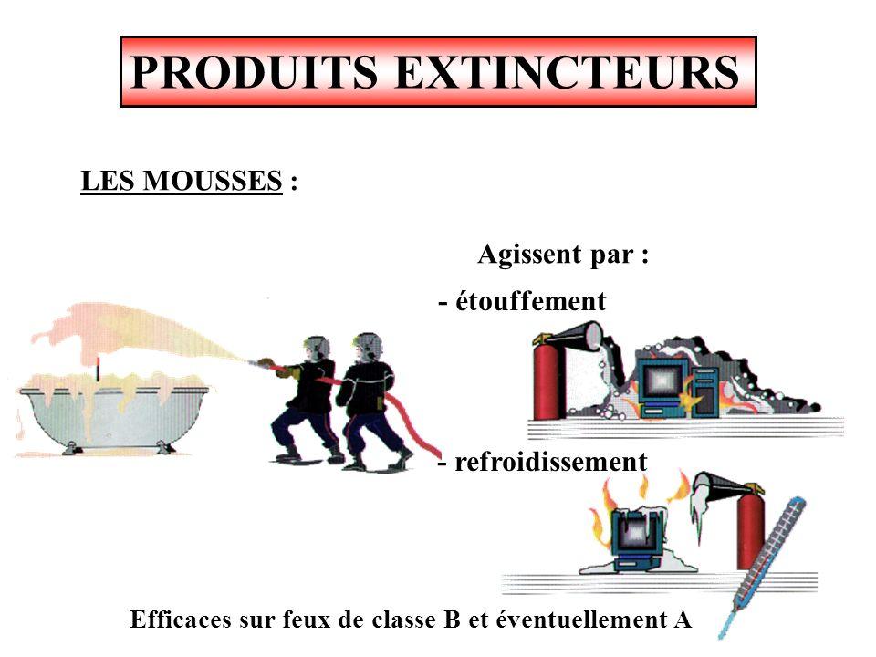 PRODUITS EXTINCTEURS LES MOUSSES : Chimique Physique