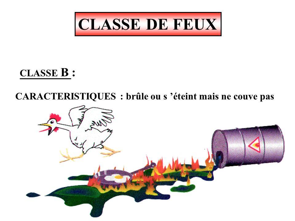 CLASSE DE FEUX CLASSE B : feux de liquides ou solides liquéfiables SuperGasoilHuilesAlcools, etc...Pétrole