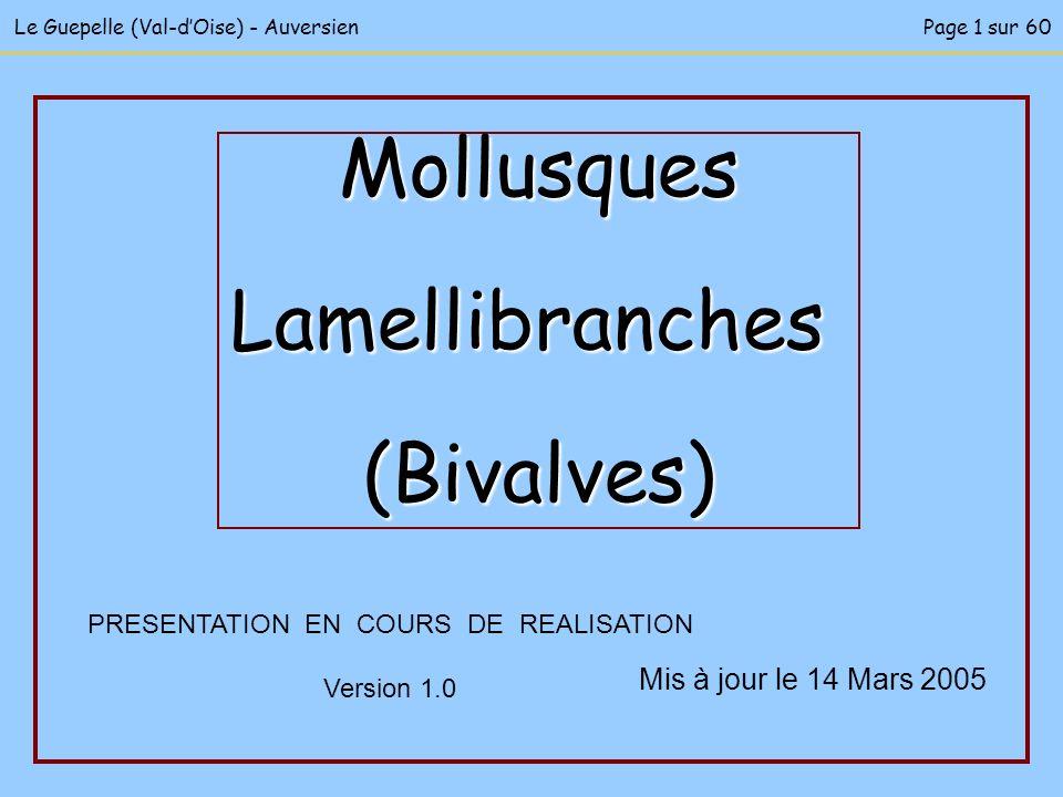 Mis à jour le 14 Mars 2005 PRESENTATION EN COURS DE REALISATION Version 1.0 MollusquesLamellibranches(Bivalves) Le Guepelle (Val-dOise) - AuversienPag