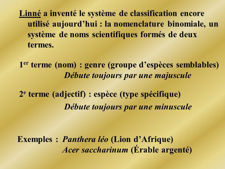 Linné a inventé le système de classification encore utilisé aujourdhui : la nomenclature binomiale, un système de noms scientifiques formés de deux te