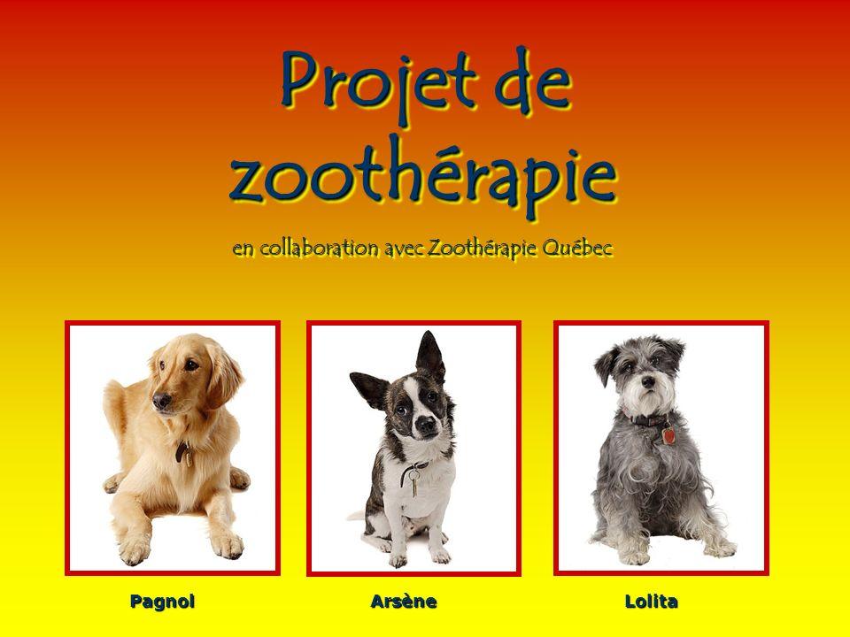 Projet de zoothérapie en collaboration avec Zoothérapie Québec Projet de zoothérapie en collaboration avec Zoothérapie Québec PagnolArsèneLolita