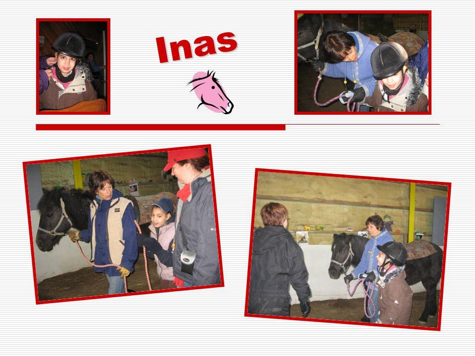 Pour réaliser les projets « Le Petit cheval blanc » et de zoothérapie nous sommes À la recherche de partenaires pour lannée 2010-2011