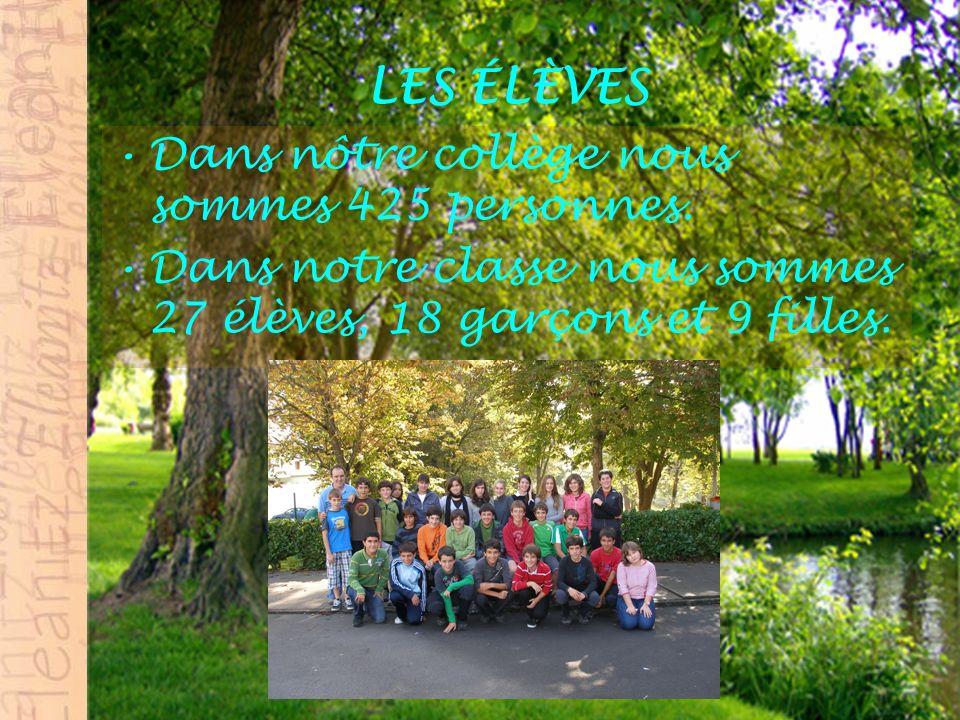 LES ÉLÈVES DE LA CLASSE DE FRANÇAIS Dans la classe de français nous sommes 7élèves, 3 garçons et 4 filles.