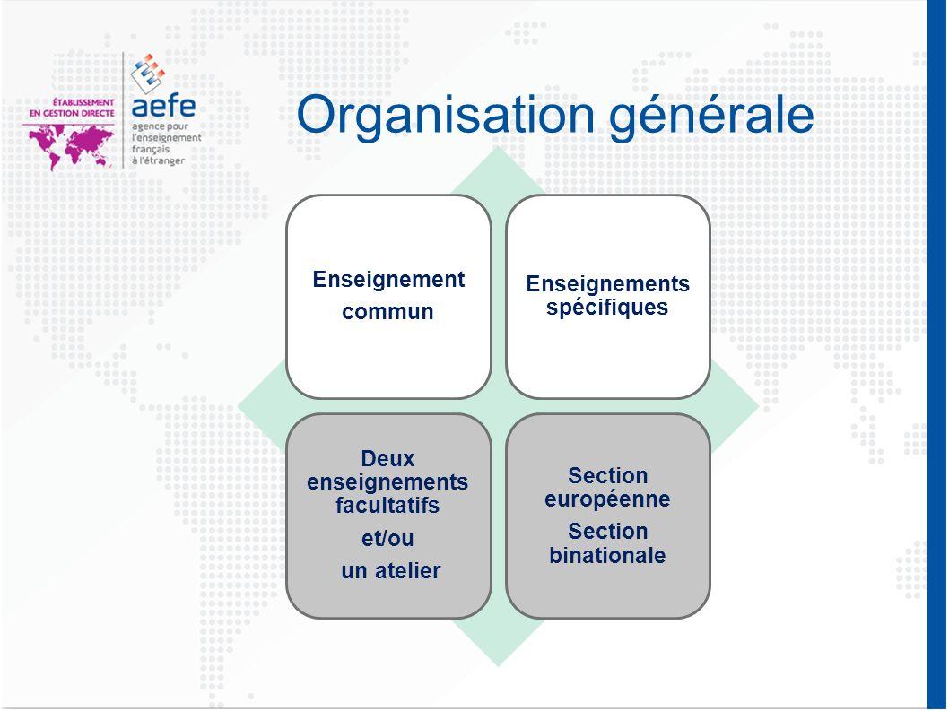 Organisation générale Enseignement commun Enseignements spécifiques Deux enseignements facultatifs et/ou un atelier Section européenne Section binationale