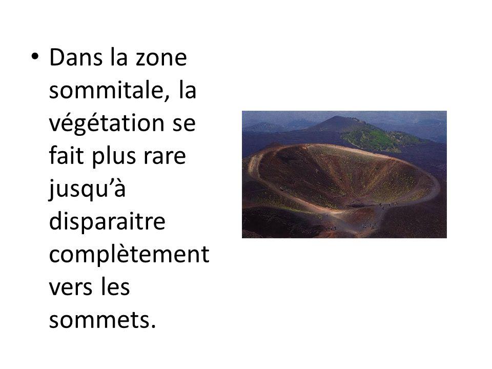 LEtna est un stratovolcan avec des éruptions majoritaire ment effusives; il est classé comme volcan rouge qui émet des laves très fluides.