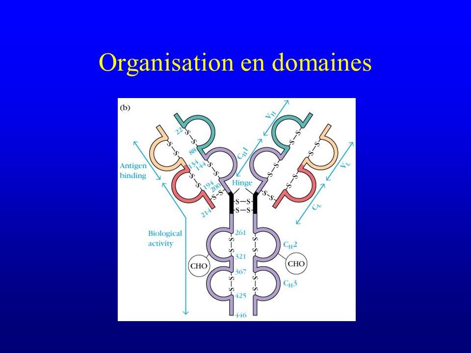 Organisation en domaines