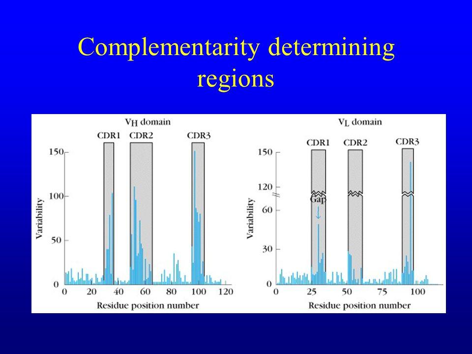 Complementarity determining regions