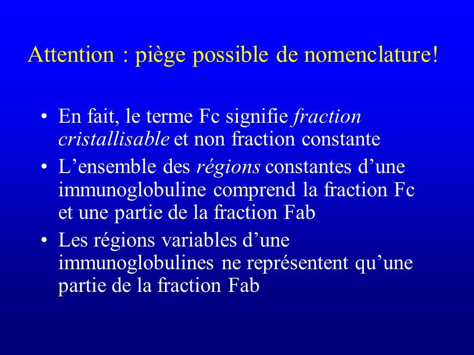 Attention : piège possible de nomenclature! En fait, le terme Fc signifie fraction cristallisable et non fraction constante Lensemble des régions cons