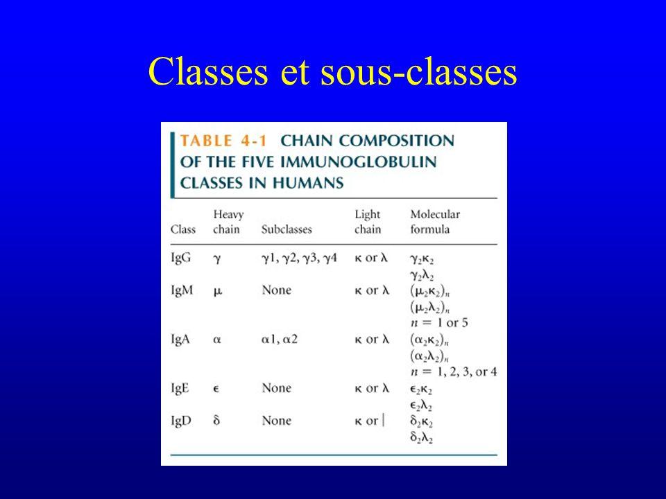 Classes et sous-classes
