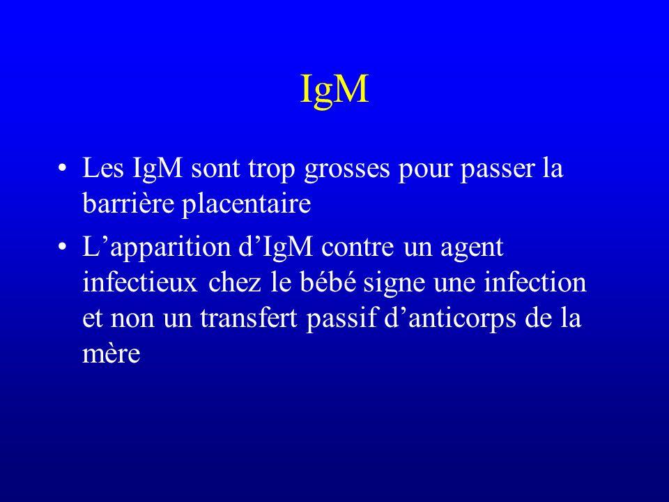 IgM Les IgM sont trop grosses pour passer la barrière placentaire Lapparition dIgM contre un agent infectieux chez le bébé signe une infection et non