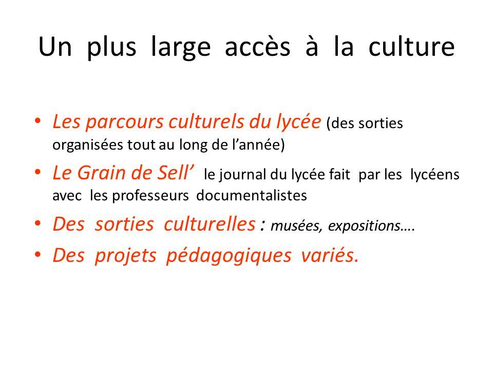 Un plus large accès à la culture Les parcours culturels du lycée (des sorties organisées tout au long de lannée) Le Grain de Sell le journal du lycée